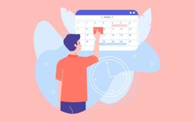 Appointment Hour Booking: Plugin Overview
