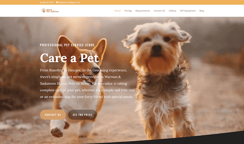 Bo's Pet Service